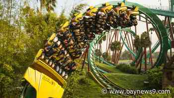 Busch Gardens Tampa Expected to Reveal Reopening Plans Soon