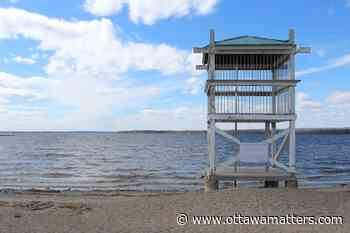 City of Ottawa advising residents not to swim at its beaches - OttawaMatters.com