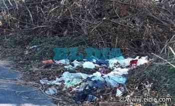 Limpieza en Villa Elisa tras un reclamo por un basural difundido por eldia.com - Diario El Dia