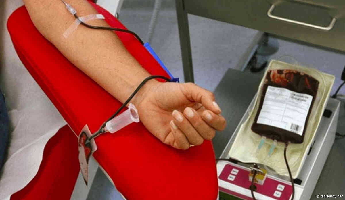 Solicitan donadores de sangre en Villa Elisa - Diario Hoy (Argentina)