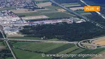 Erweiterung der Lech-Stahlwerke: Ausschuss vertagt Debatte über Waldrodung in Meitingen - Augsburger Allgemeine
