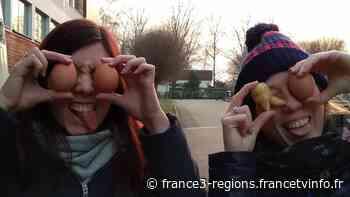 INSOLITE - Déconfinement : au lycée agricole d'Obernai, des journées portes ouvertes virtuelles toute la se - France 3 Régions