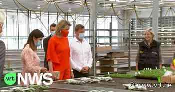 Koningin Mathilde bezoekt siertelers - VRT NWS