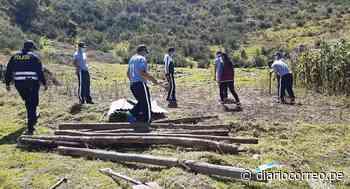 Huancavelica: Familia desalojada va a vivir en descampado - Diario Correo