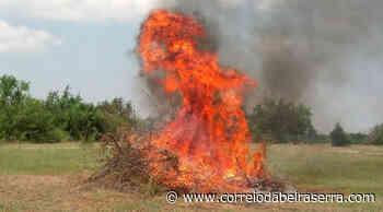 Protecção Civil de Oliveira do Hospital suspende autorização de queimas até segunda-feira - Correio da Beira Serra