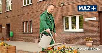 """Gransee - Hausmeister Uwe Valentin aus Gransee ist Hans Dampf in allen Gassen und """"Lotto-Gewinner"""" - Märkische Allgemeine Zeitung"""