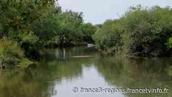 Bassin d'Arcachon : un corps retrouvé dans la l'Eyre à Biganos - France 3 Régions