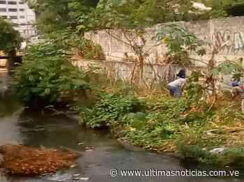 Inician limpieza de caudales en Cúa y Santa Teresa del Tuy - Últimas Noticias