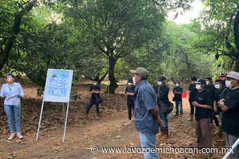 Ante reanudación de actividades, refuerzan la prevención en Uruapan - La Voz de Michoacán