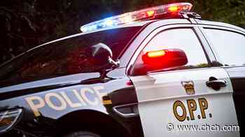 OPP searches for man, 20, who went missing at Elora Gorge - CHCH News