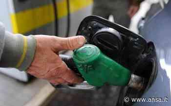 Consumi benzina e gasolio per autotrazione in calo - Sotto la Lente - Agenzia ANSA