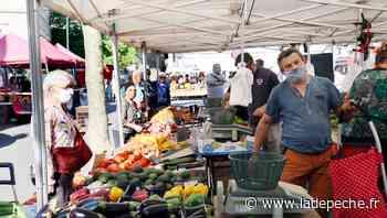Saint-Gaudens. Le nouveau marché a déjà ses adeptes - LaDepeche.fr