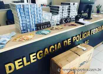 Polícia Militar apreende 1860 maços de cigarros em Jaguaruna - Engeplus