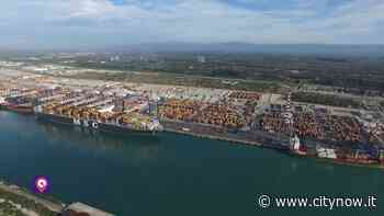 Gioia Tauro, Vecchio (Confindustria RC): 'Il porto è rinato, vittoria di chi produce' - CityNow