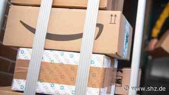 Grosshansdorf: Kollege beobachte Paketbote bei Unterschlagung | shz.de - shz.de