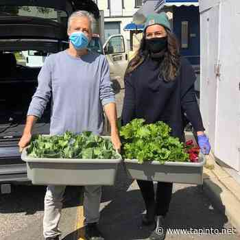 Tracey and Jon Stewart donate first harvest of Hockhockson Farm Foundation to Lunch Break - TAPinto.net