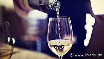 Biodynamische Weine aus der Pfalz: Hell, klar und würzig