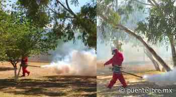 Rociaron insecticida para mosquitos en Pradera Dorada - Puente Libre La Noticia Digital