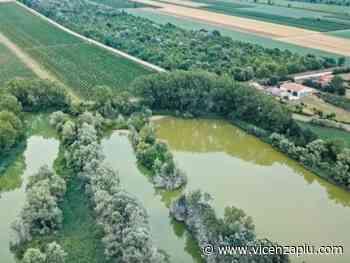 Water We Want, la rubrica di Letizia: inaugurato a Meolo il nuovo percorso digitale del Water Museum of Venice - Vicenza Più