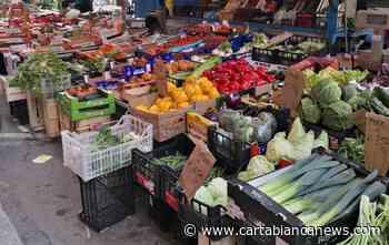 Crevalcore, bando posteggi mercato settimanale e Fiera del Carmine - CartaBianca news