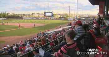 Okotoks Dawgs left disappointed as Western Canadian Baseball League cancels 2020 season - Globalnews.ca