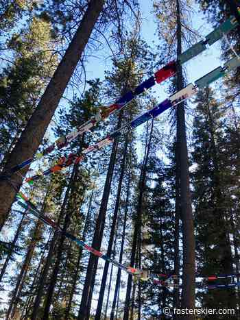 Inspired: Canmore's 2020 Art Walk in the Woods - fasterskier.com