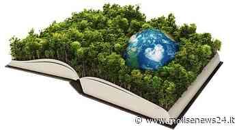 Isernia, progetto scolastico su tematiche ambientali - Molise News 24