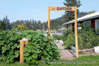 Plant veggies and enter Barriere Blooms contest - Barriere Star Journal