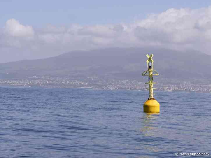 Italy's seas speak: No tourists or boats mean cleaner water