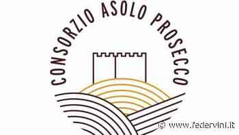 """Asolo Prosecco, al via il nuovo piano del """"cru"""" di collina - Federvini - Federvini"""