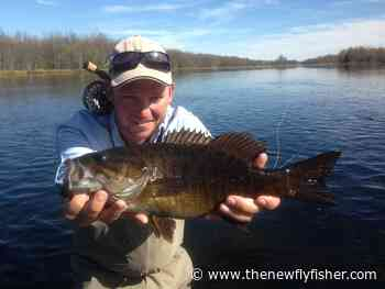 In Pursuit of Smallmouths at Chapleau Lodge - The New Fly Fisher