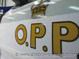 Officer assaulted at traffic stop - Strathroy Age Dispatch