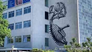 Wereldberoemde graffitikunstenaar werkt nog eens in zijn thuisstad Gent