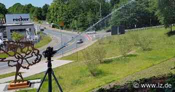 Efeu im Vattipark braucht Starthilfe | Lokale Nachrichten aus Blomberg - Lippische Landes-Zeitung