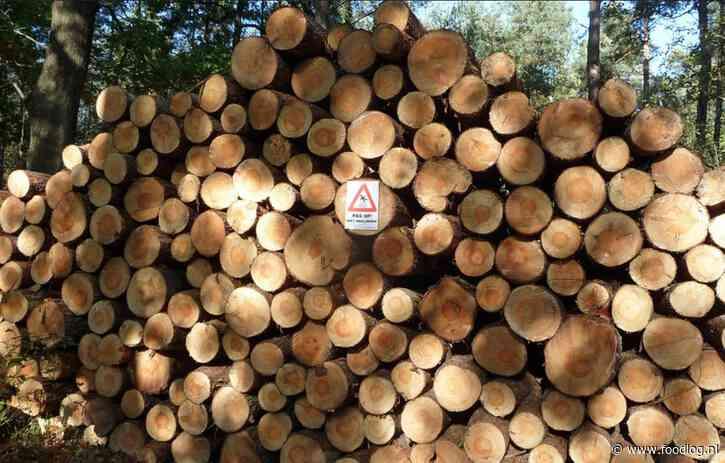 Brandbrief aan SER: stop de SDE+ subsidie op biomassa en laat isoleren!