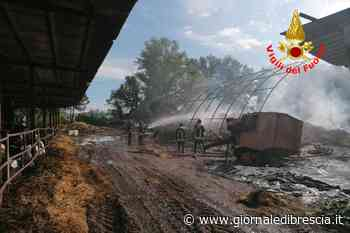Il fienile bruciato a Castenedolo - Giornale di Brescia