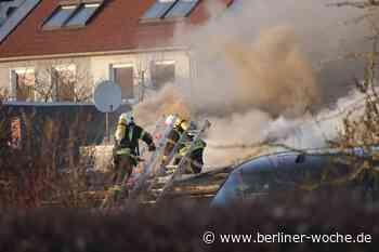 rauchsäule über Ahrensfelde: Gartenlaube brennt auf Grundstück - Umland Ost - Berliner Woche