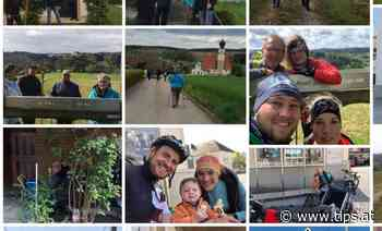 Wallfahrten nach Maria Schmolln - Tips - Total Regional