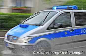 Unfall bei Rutesheim: VW-Fahrer übersieht rote Ampel - Leonberger Kreiszeitung - Leonberger Kreiszeitung