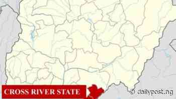 Cross River conducts peaceful council elections five years after - Daily Post Nigeria