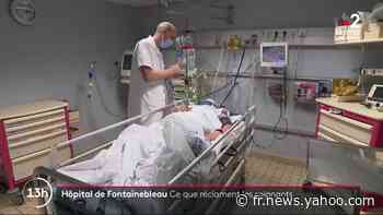 Seine-et-Marne : les revendications des soignants de l'hôpital de Fontainebleau - Yahoo Actualités