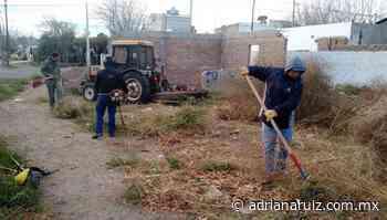 #Cuauhtemoc | Invita Municipio a conjuntar esfuerzos para mantener una ciudad limpia - Adriana Ruiz