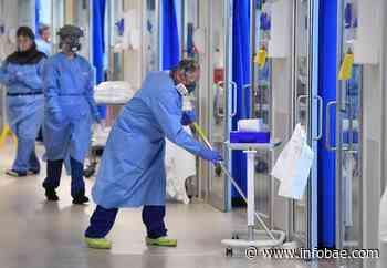 El Reino Unido registró 215 muertes más por coronavirus y 2.445 nuevos casos - infobae