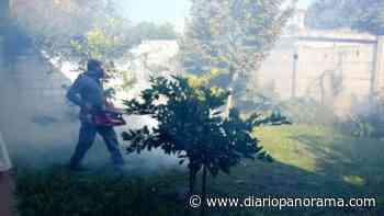 Rosario superó los 1100 casos de dengue - Diario Panorama de Santiago del Estero