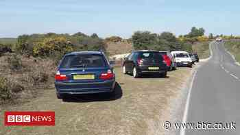 New Forest: Lockdown easing prompts verge parking fears