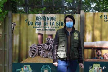 Yvelines. Le ZooSafari de Thoiry ouvre l'ensemble de son parc le mercredi 3 juin - actu.fr