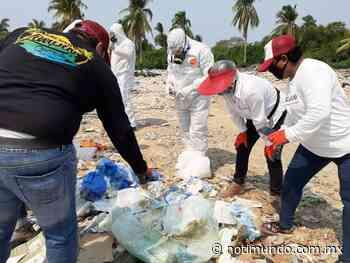 Localiza Ecología residuos infecciosos en basureros clandestinos de Llano Largo - Notimundo