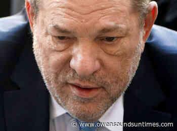 Harvey Weinstein, Disney bosses to fight underage rape lawsuit - Owen Sound Sun Times