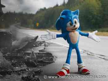 'Sonic the Hedgehog' lands a sequel - Owen Sound Sun Times