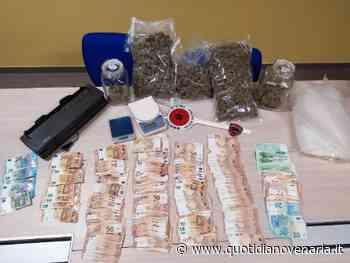RIVOLI - 18mila euro in contanti e 1.2 chili di marijuana: in manette il «pusher elegante» - QV QuotidianoVenariese